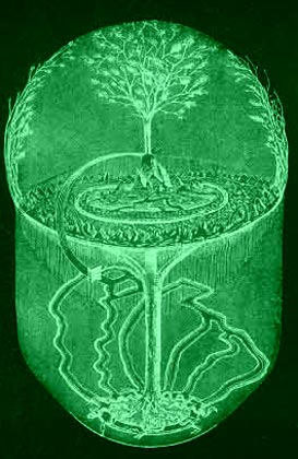 Tree of Life Picture